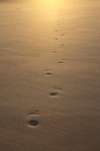 Footprints in the sand Kooljaman